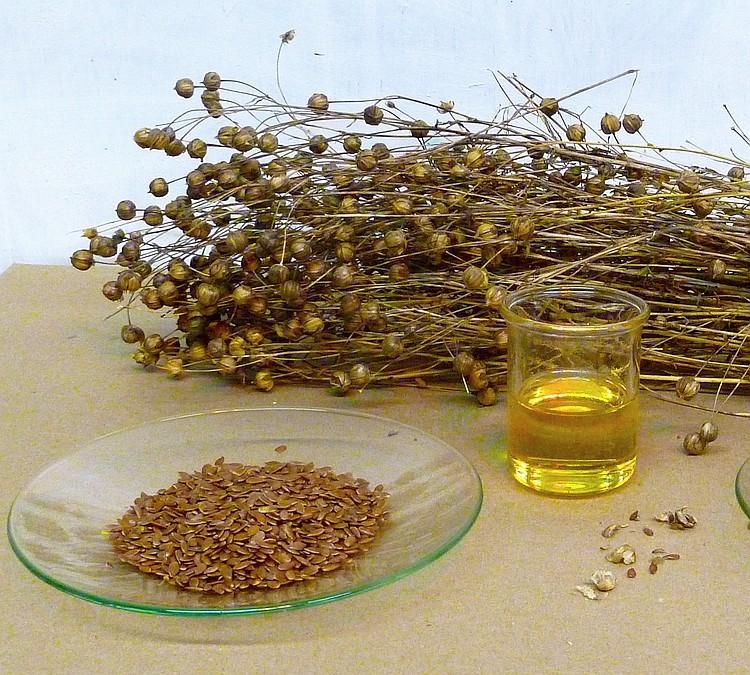 olej z siemienia lnianego